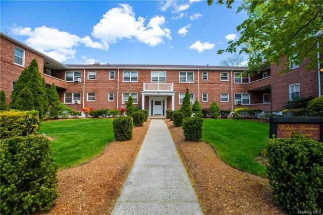 485 Webster Avenue B7, New Rochelle, NY 10801 (MLS #H6111884) :: Howard Hanna Rand Realty