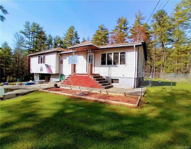 48 Kindrachuk Road, Glen Spey, NY 12737 (MLS #H6111924) :: Signature Premier Properties