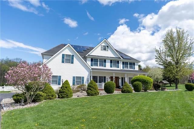 30 Cunningham Drive, Lagrangeville, NY 12540 (MLS #H6111981) :: Signature Premier Properties