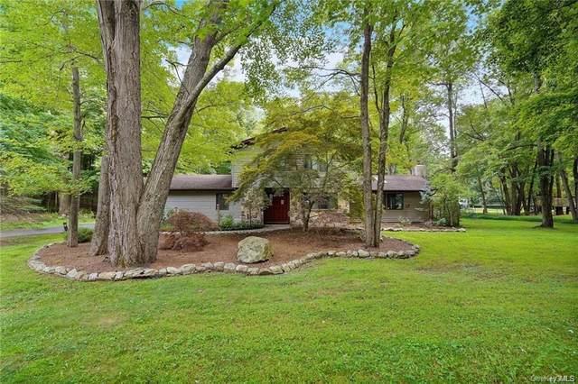 14 Lori Lane, Chester, NY 10918 (MLS #H6111985) :: Signature Premier Properties