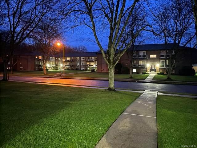 26 Tanager Road #2601, Monroe, NY 10950 (MLS #H6111997) :: Barbara Carter Team