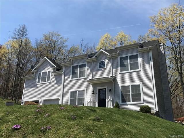 240 Renies Road, Monroe, NY 10918 (MLS #H6112042) :: Signature Premier Properties