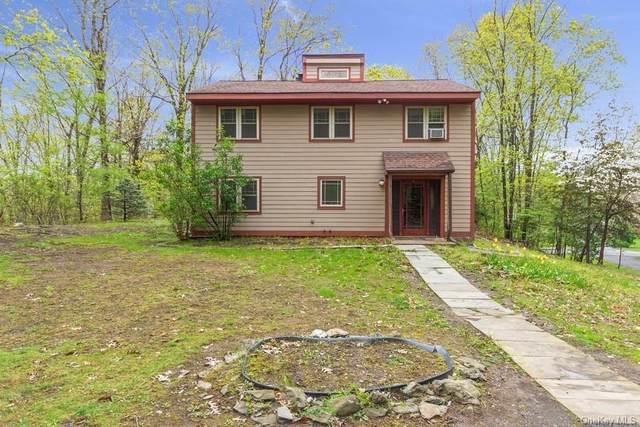 30 Fallkill Road, Hyde Park, NY 12538 (MLS #H6112099) :: Signature Premier Properties