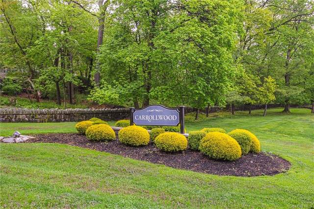 240 Carrollwood Drive, Tarrytown, NY 10591 (MLS #H6112125) :: Corcoran Baer & McIntosh