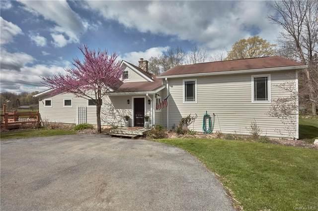 374 County Route 1, Warwick, NY 10990 (MLS #H6112145) :: Cronin & Company Real Estate