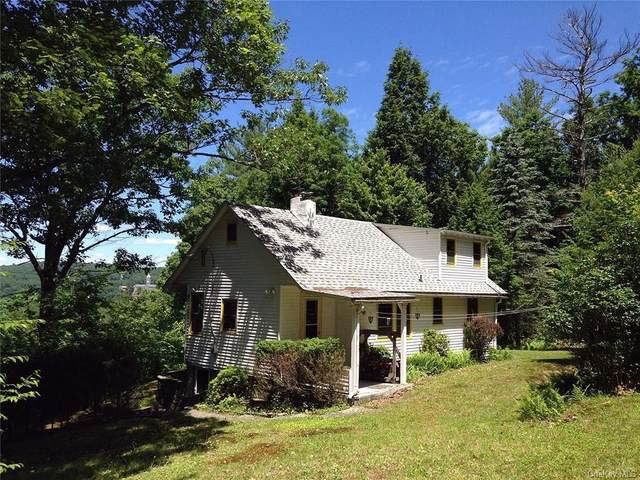 9158 State Route 97, Callicoon, NY 12723 (MLS #H6112174) :: Carollo Real Estate