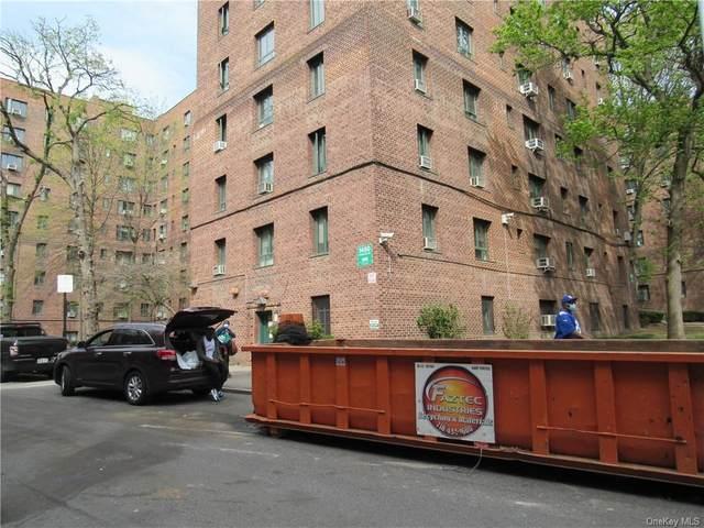 1450 Parkchester Road 4A, Bronx, NY 10462 (MLS #H6112190) :: Barbara Carter Team