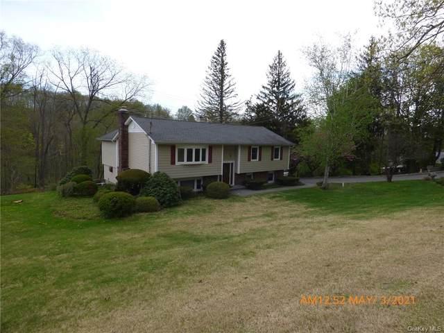 68 Wood Street, Mahopac, NY 10541 (MLS #H6112213) :: Signature Premier Properties