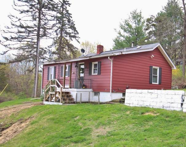 559 County Route 15, Call Listing Agent, NY 12523 (MLS #H6112290) :: McAteer & Will Estates | Keller Williams Real Estate