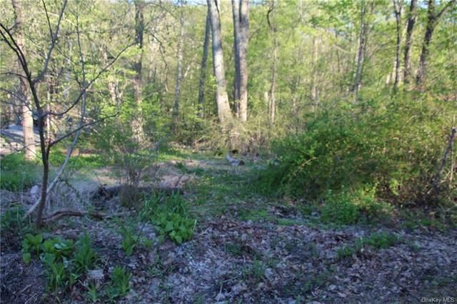 Hillside Road, Greenwood Lake, NY 10925 (MLS #H6112315) :: Corcoran Baer & McIntosh