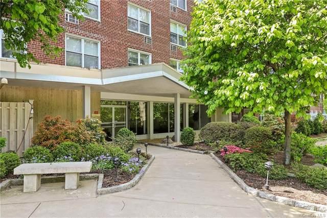 222 Martling Avenue 1D, Tarrytown, NY 10591 (MLS #H6112352) :: Carollo Real Estate