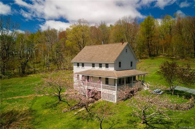 20 Old Taylor Road, Jeffersonville, NY 12748 (MLS #H6112457) :: Mark Boyland Real Estate Team