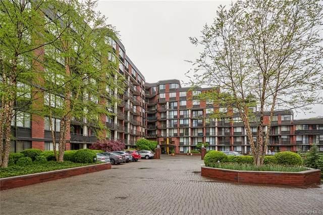 50 E Hartsdale Avenue 3H, Hartsdale, NY 10530 (MLS #H6112474) :: Carollo Real Estate
