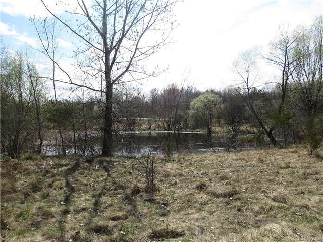 1 Burlingham Road, Pine Bush, NY 12566 (MLS #H6112520) :: Cronin & Company Real Estate