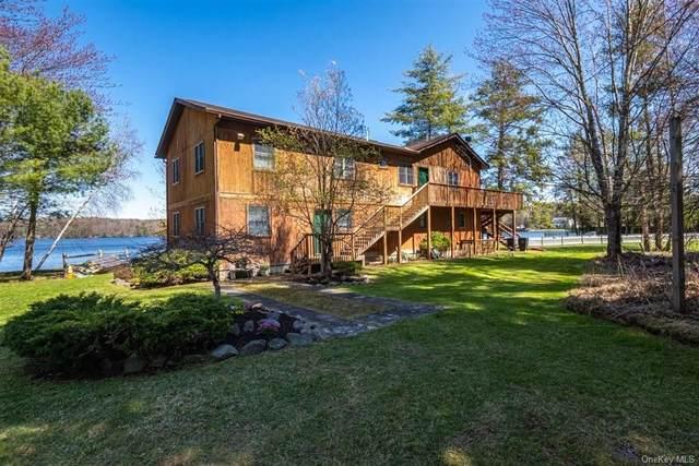 511 Sackett Lake Road, Monticello, NY 12701 (MLS #H6112535) :: Cronin & Company Real Estate