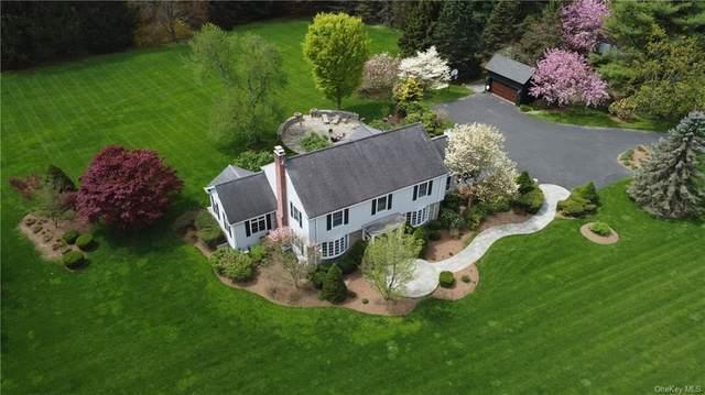 119 Cobb Road, Brewster, NY 10509 (MLS #H6112563) :: Signature Premier Properties