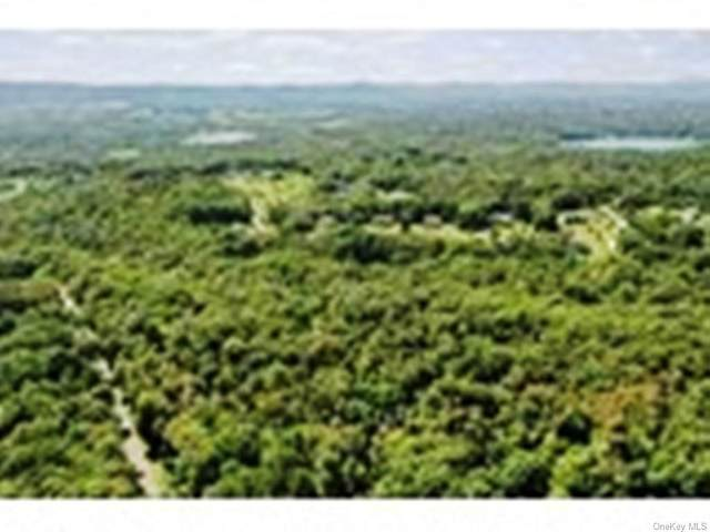 Baker Road - Lot 2, Hopewell Junction, NY 12533 (MLS #H6112616) :: The Home Team