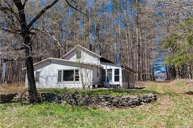 219 Turkey Ridge Road, Fleischmanns, NY 12430 (MLS #H6112623) :: Signature Premier Properties