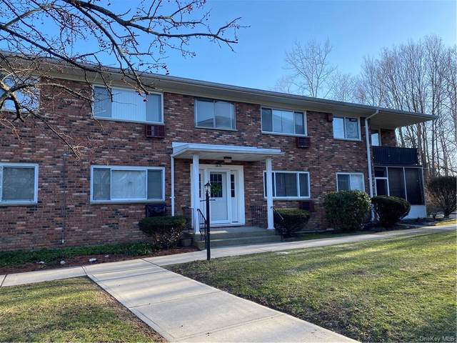 810 Blooming Grove Turnpike #67, New Windsor, NY 12553 (MLS #H6112644) :: Cronin & Company Real Estate