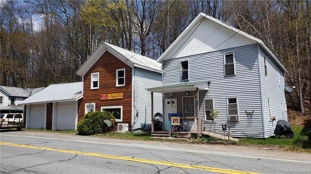 254 Main Street, Grahamsville, NY 12740 (MLS #H6112692) :: Signature Premier Properties