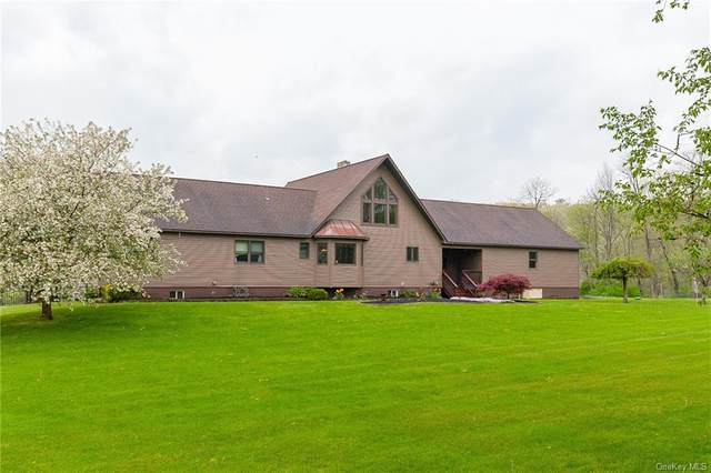 35 W Shore Court, Esopus, NY 12429 (MLS #H6112728) :: McAteer & Will Estates | Keller Williams Real Estate