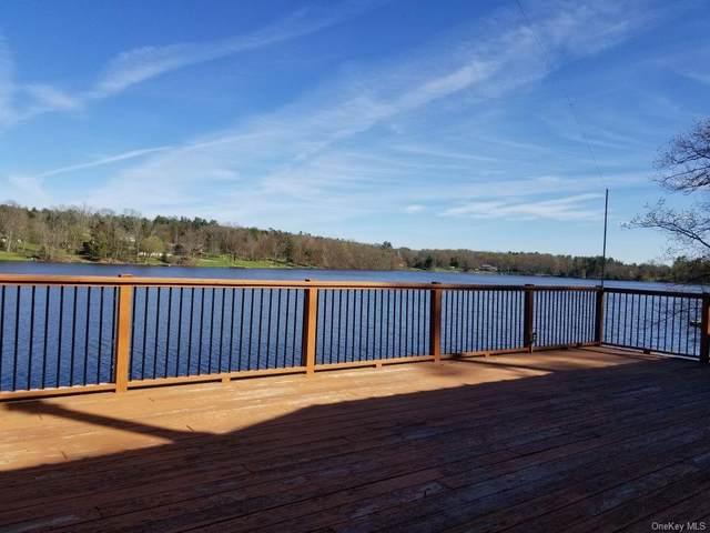 6649 State Route 52, Lake Huntington, NY 12752 (MLS #H6112767) :: Barbara Carter Team