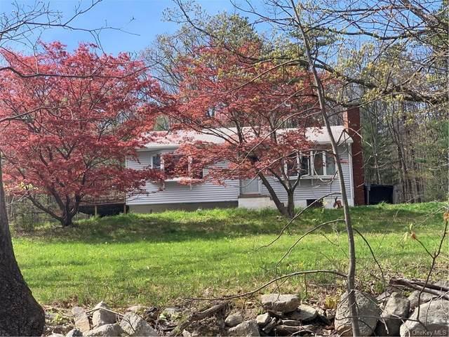 144 Cox Road, Pine Bush, NY 12566 (MLS #H6112781) :: Cronin & Company Real Estate