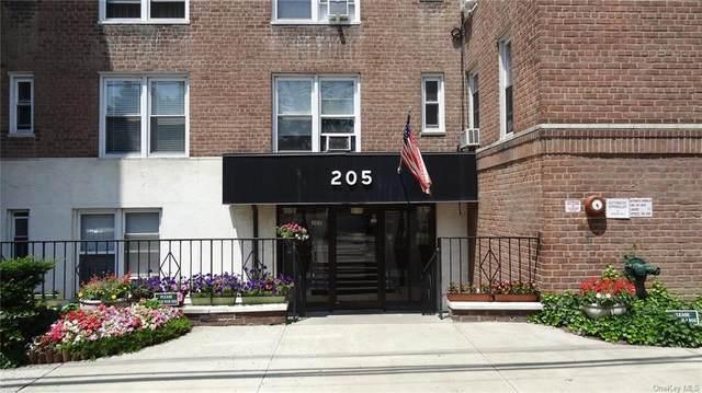 205 E 238 Street 1J, Bronx, NY 10470 (MLS #H6112796) :: Cronin & Company Real Estate