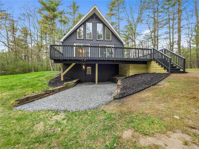316 Tuthill Road, Barryville, NY 12719 (MLS #H6112992) :: Signature Premier Properties