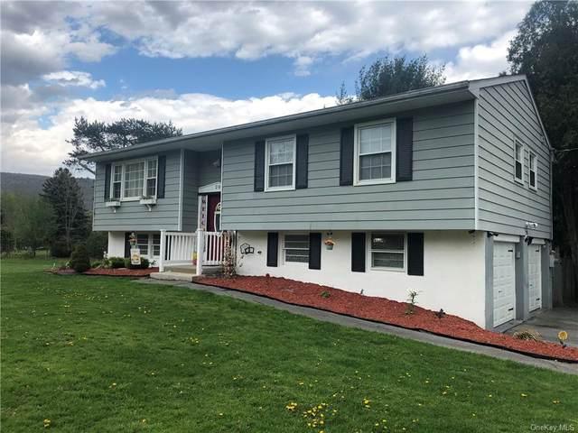 20 N Farm Drive, Dover Plains, NY 12522 (MLS #H6113052) :: Signature Premier Properties
