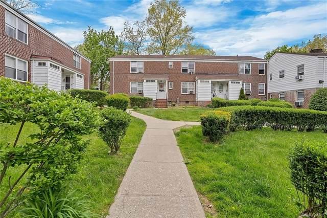 88 Spruce Street 1A, Yonkers, NY 10701 (MLS #H6113102) :: Shalini Schetty Team