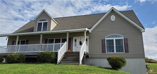 18 Vineyard Lane, Marlboro, NY 12542 (MLS #H6113133) :: Cronin & Company Real Estate