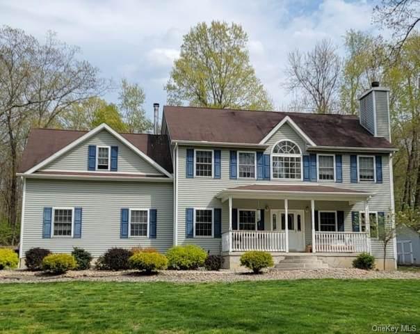 795 Orchard Drive, Wallkill, NY 12589 (MLS #H6113161) :: Cronin & Company Real Estate