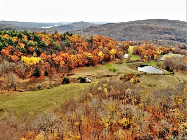 158 Wagners Road, Neversink, NY 12765 (MLS #H6113165) :: Signature Premier Properties