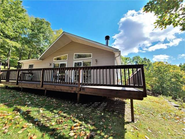 114 Wagners Road, Neversink, NY 12765 (MLS #H6113166) :: Signature Premier Properties