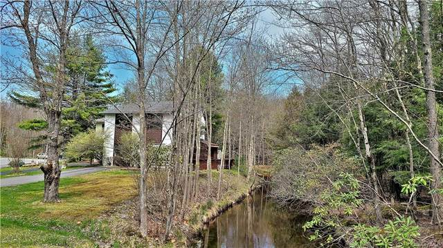 52 Medallion Road, Kiamesha Lake, NY 12751 (MLS #H6113167) :: Signature Premier Properties