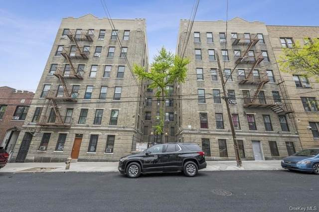 645 Barretto Street Apt 5J, Bronx, NY 10474 (MLS #H6113229) :: Howard Hanna | Rand Realty