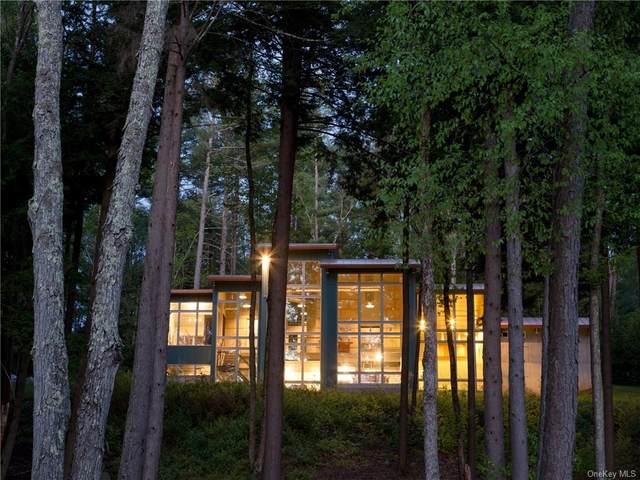 775 Starlight Road, Monticello, NY 12701 (MLS #H6113242) :: Signature Premier Properties