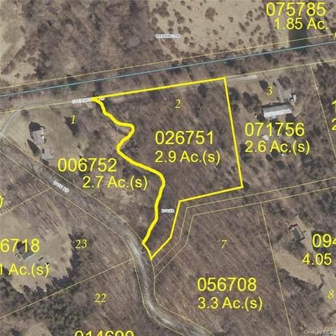 Lot 2, Overbrook Road, Dover Plains, NY 12522 (MLS #H6113322) :: Signature Premier Properties