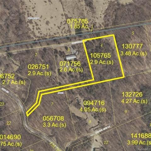 Lot 4, Overbrook Road, Dover Plains, NY 12522 (MLS #H6113334) :: Signature Premier Properties