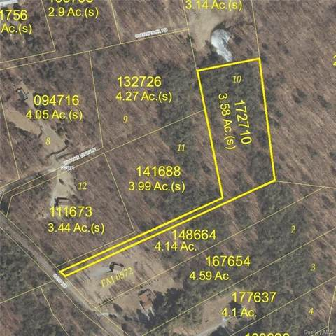 Lot 10, Overbrook Road, Dover Plains, NY 12522 (MLS #H6113344) :: Signature Premier Properties