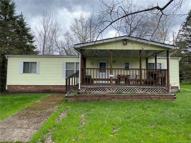 11 Murphy Road, Woodbourne, NY 12788 (MLS #H6113365) :: Signature Premier Properties