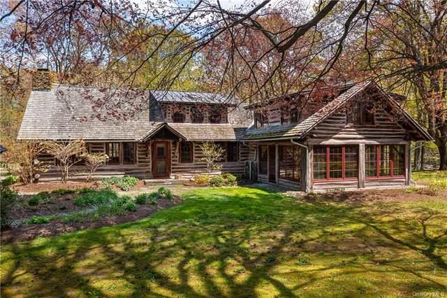 204 S Amenia Road, Wassaic, NY 12592 (MLS #H6113366) :: Signature Premier Properties