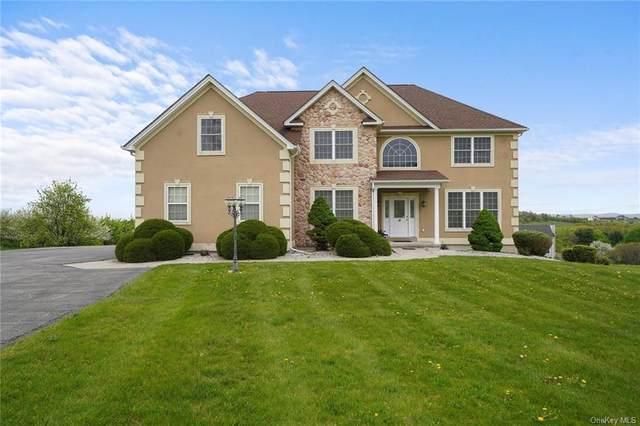14 Burma Road, Marlboro, NY 12542 (MLS #H6113384) :: Cronin & Company Real Estate