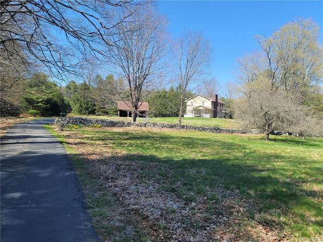 1226 State Route 42, Sparrowbush, NY 12780 (MLS #H6113443) :: Signature Premier Properties