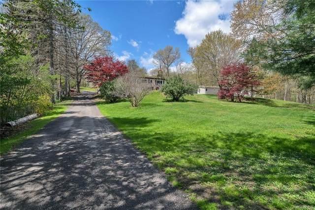 17 Netherwood Plaza, Salt Point, NY 12578 (MLS #H6113456) :: Cronin & Company Real Estate