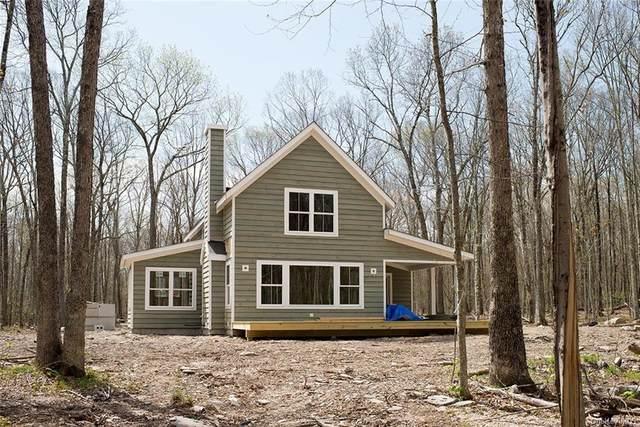 154 Maple Lane, Narrowsburg, NY 12764 (MLS #H6113519) :: Signature Premier Properties
