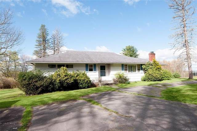 114 Friedman Road, Monticello, NY 12701 (MLS #H6113522) :: Signature Premier Properties
