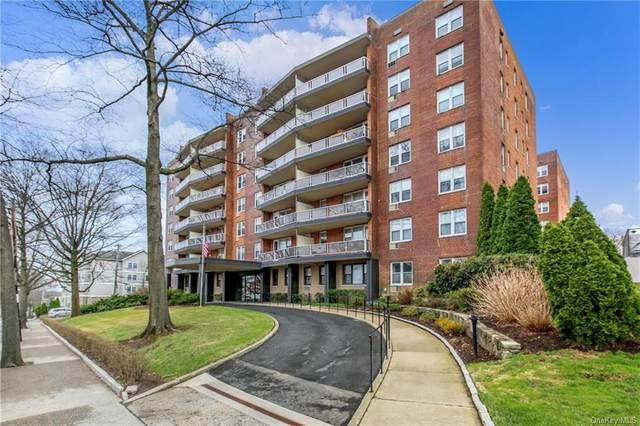 360 Westchester Avenue #305, Port Chester, NY 10573 (MLS #H6113524) :: Barbara Carter Team