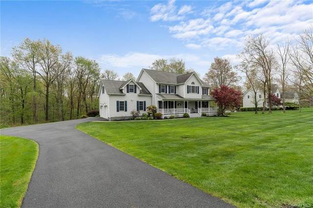 59 Sandra Lane, Monroe, NY 10950 (MLS #H6113535) :: Signature Premier Properties